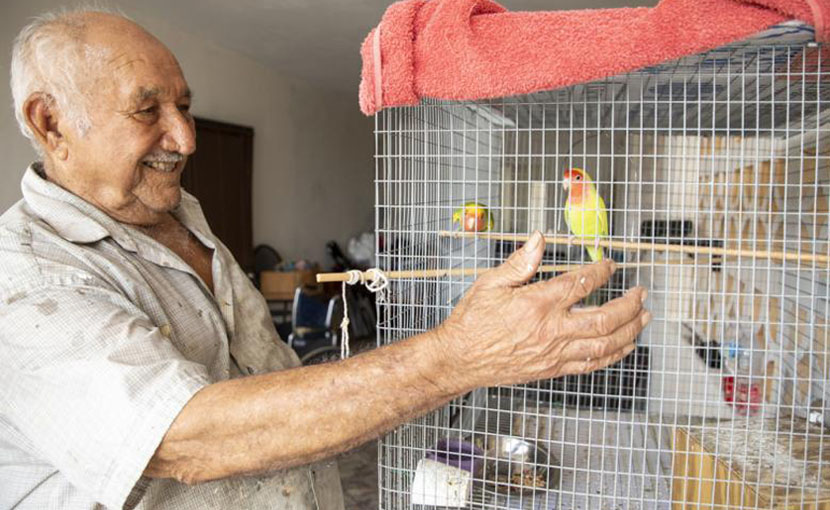 Older man smiling at his cage of birds